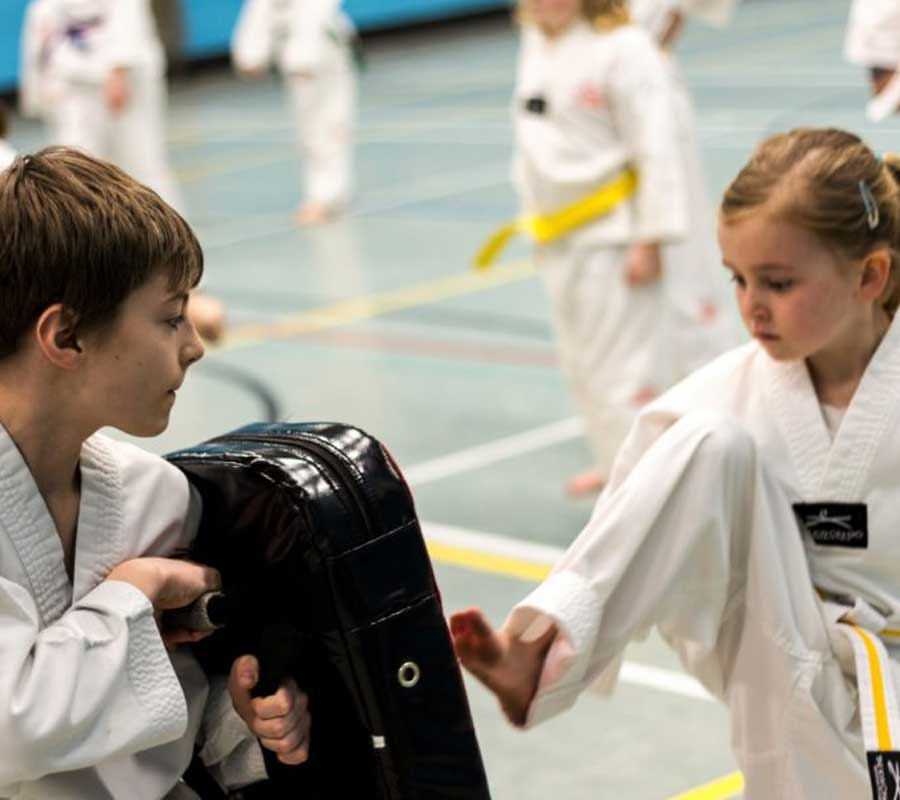 Tae Kwon Do Childrens Classes